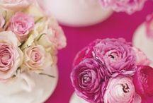 Pink sweetness or just cute / Alles rose rosig en rosiger
