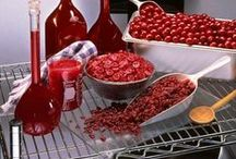 CRANBERRIES in Schools (client) / Recipes and tips for including dried cranberries and other forms in school meals and snacks