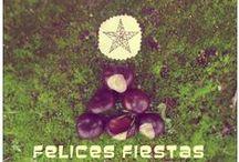 Eco-Decoracion / Upcycle / Interiorismo / Cosas bonitas de casa, recicladas, reutilizadas, orgánicas...