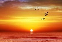 Sunrise Sunset / Striking images of beautiful sunrises and sunsets, the most magical times of day. (If you'd like to add pins to this group board just follow us and then send us a message and we'll add you).