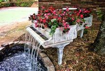 Paisagismo, jardinagem, plantas e flores