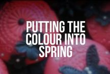 Putting the colour into Spring