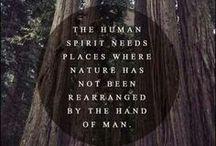 N A T U R E / All things nature