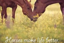 Horses❤️ / To me, when I look at #horses I see #freedom.  / by E.