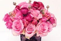 Elegant Ranunculus Fkowers | NYC Delivery / https://www.gabrielawakeham.com/