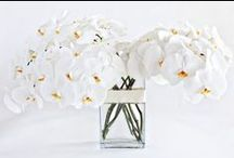 Pure White Flowers | NYC / https://www.gabrielawakeham.com Modern white designer flower arrangements with orchids, calla lilies or roses for Manhattan and Williamsburg. Peaceful, elegant white flower arrangements look great in offices and homes. Perfect looks with white flowers include tall bouquets in clear cylinders and shorter white-on-white floral designs in matching color containers like square ceramic cubes. We also offer custom white flower arrangements created to your specifications and can deliver them same-day.