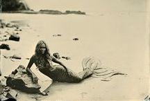 mermaids. / passion sirène