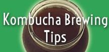 Kombucha Brewing Tips / Delicious homemade kombucha is easy with these tips and techniques.