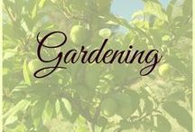 Gardening - Grow Your Own Food / Growing your own food is great, even if you're doing it in a small space or even indoors. Whether you're gardening for self-reliance, for fresh produce or to save money, a productive veggie garden can keep you fed year round.   Follow this board for gardening tips and techniques, permaculture and food forest gardening, companion planting and natural pest control, growing fruit and vegetables from seeds, attracting pollinators to the garden and so much more.