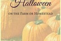 Halloween on the Farm or Homestead / What will you be doing on All Hallow's Eve? Check this board for inspiration - cooking, carving pumpkins and spooky decoration, costumes and more.