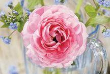 Flores e decoração com flores...