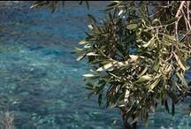 Lakonia, Peloponnese