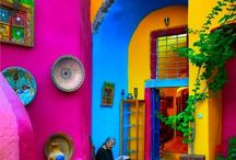 Color Explosion / Whether it's in nature, clothes, art, food or anywhere, Color can make us feel alive, expansive & joyful.