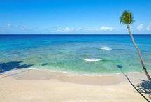 Hotels - Barbados / Hotels in Barbados