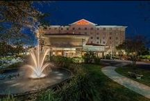 Hotels - Tampa, Florida, USA / Hotels in Tampa, Florida, USA  www.HotelDealChecker.com