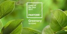 2017 Pantone of the Year (Greenery) / Kitchen design ideas using 2017's Pantone of the Year - Greenery. Welcome fresh beginnings!