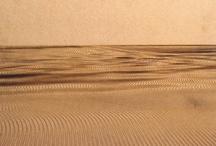 Vibration in wood - Fredrik Skatar