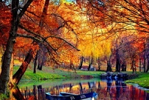 Incredible Autumn!!! / by Beauty On Earth