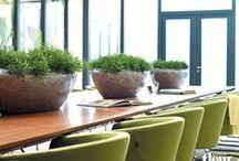 LOFT / LOFT series: exclusive designs and stunning finishes for plantings & decorations.• LOFT Serie: Exklusive Designs und aufregende Finishs für Ihre Bepflanzungen & Dekorationen.