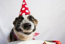 Bora rir que viajar tá caro! / Enquanto for capaz de sorrir, serei capaz de manter minha INsanidade!