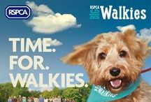 BIG Walkies 2015 - Memories / We held the best dog walk ever at Park Hall Country Park, Stoke on Trent on 6th Sept 2015. These are some of our memories from the day.