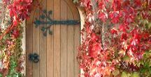 Couleurs d'automne ~ Fall colours