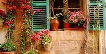 Lifestyle // Fleurs à la fenêtre