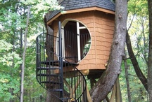 Trees and Tree Houses