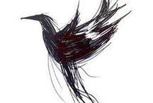 bird#vogel / de mooiste vogels