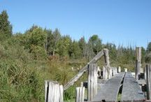"""CK Range / Out on the Range! """"The Range"""" is the 180-acre portion of the Camp Kawartha property featuring natural forests, fields and wetlands."""
