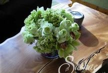 Floral for the Home  / exquisite floral additions for your dwelling  Sashae floral Arts and Gifts, Aspen Co