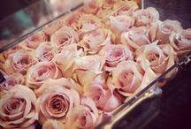 Roses & Peonies / Flowers