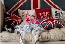 "English Setter,Gordon Setter (England) / <meta name=""pinterest"" content=""nopin"" />"