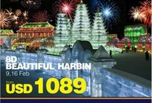 Beautiful Harbin with AviaTour