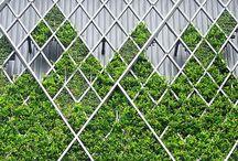 Eco Design // / by Natasha Troy