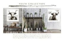 Nguni Portraits {Collection} by Francoise V / What attracts me to Nguni's is the strength in their stance and posture, as well as their earthy colours and patterns that are undeniably African. Such strong and beautiful creatures that we are simply blessed to admire.