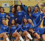 Pride of the Titans / St. Petersburg College students take on the competition in baseball, softball, basketball, tennis and volleyball