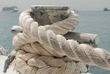 Sand Dollars & Starfish ⎈ Nautical Coastal Living / Seaside Dreaming ⎈ Beach House ⎈ Island Life ⎈ Sea Shells ⎈ Bayside ⎈ Ocean ⎈ Beach Cottage ⎈ Seashore ⎈ Flip Flops ⎈ Life is Good  ⎈ find more inspiration at: www.facebook.com/BeachCottageLifePhotography ⎈ www.etsy.com/shop/BeachCottageLife