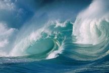 Miracles of Oceans