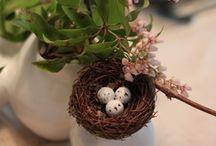 Pasen / Easter