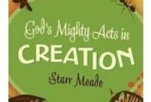 Creation Care Resources / Here are some of our favorite resources for teaching Creation Care to children in Christian schools and Sunday school classes. / by Calvin College Ecosystem Preserve