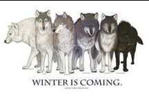 """Valar Dohaeris: Board of Thrones / """"When the snows fall and the white winds blow, the lone wolf dies but the pack survives."""" / by Nish ツ"""