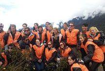 Inca Jungle Trail / Inca jungle