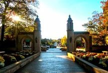 things to do around bloomington / by Amanda Wegener
