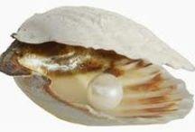 perly / pearls / Perla je malý lesklý kulovitý předmět vzniklý uvnitř ústřice nebo perlorodky. Přírodní perly vznikají, pokud do schrány ústřice vnikne cizí tělísko – např. zrnko písku. To vyvolá obrannou reakci ústřice, která začne vylučovat perleťovou hmotu usazující se na cizím tělese. V jedné ústřici může růst současně pouze jedna perla. Přírodní perly jsou velmi vzácné.