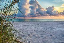 Ocean Beach Sea Love / by Leah Skinner