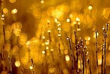 Gold and Yellow