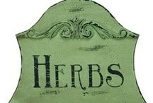 Herbs &Kitchen Garden