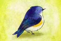 Oiseaux / birds