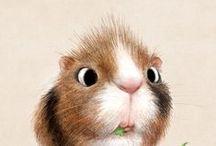 Illustration : animal (rongeur)